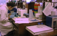lab-work.jpg